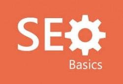 basic seo India