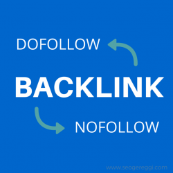 BACK Links SEO